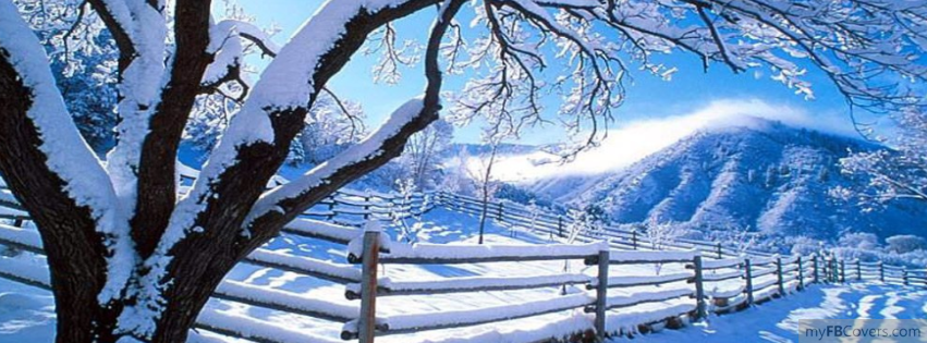 Snowy Forest Facebook Covers - myFBCovers
