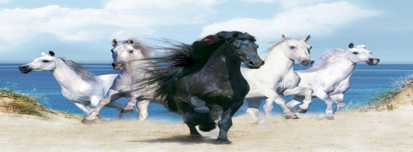 Wallpapers Animals Wallpapers Fantasy Beautiful Horses