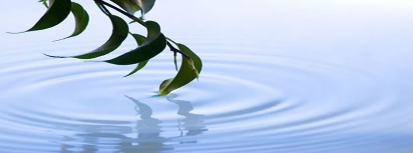 Beauty Bluex Calm Meditation Nature Facebook Covers ...