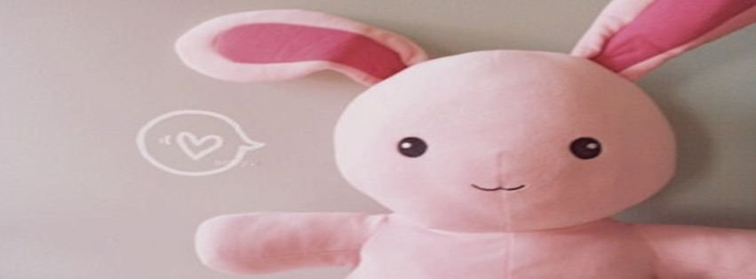 Bunny Cute Pink Plush Timeline Cover Facebook Covers ...