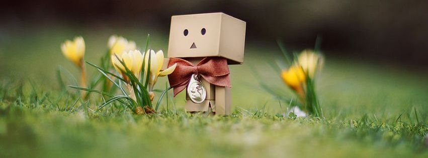 Spring Accommodation Facebook Covers: Danbo Spring Facebook Timeline Cover Facebook Covers