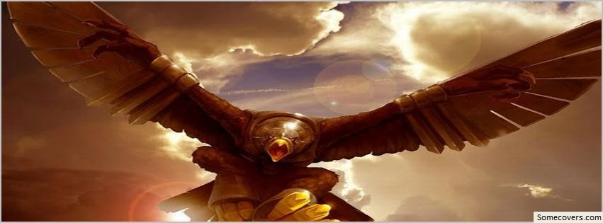 eagle facebook covers hd 13 facebook covers   myfbcovers