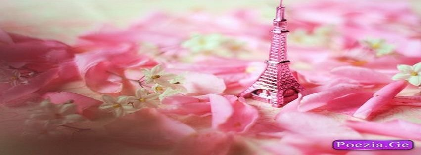 Facebook Covers Cute I Was Born A Champion Paris Pink ...