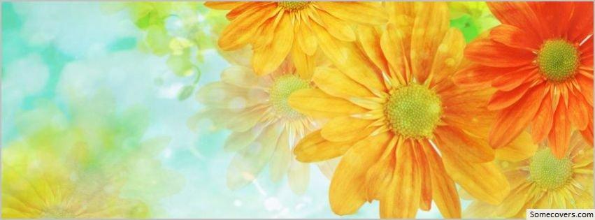 Beautiful Flowers Background 25 Facebook Timeline Cover Facebook ...