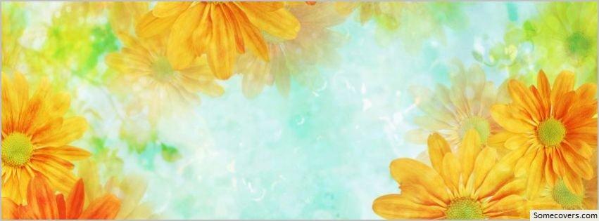 ... - Facebook Timeline Cover Beautiful Flower Beautiful Flower Facebook