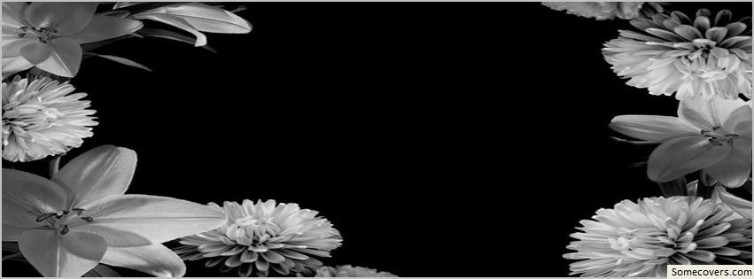 Black And White Facebook Covers ~ Black white flowers design facebook timeline cover
