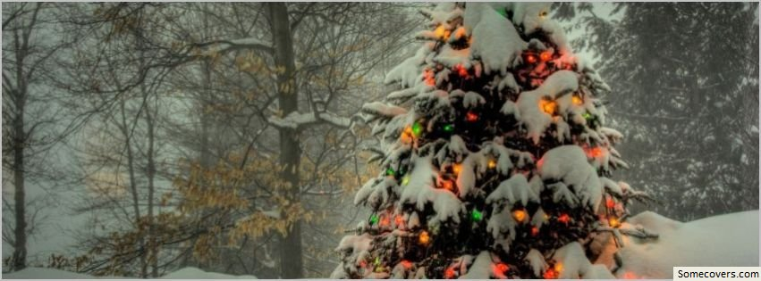 Christmas Tree Outside Facebook Timeline Cover Facebook