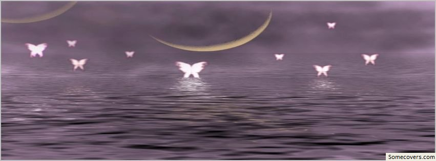 fairies and moon image facebook timeline cover80 facebook