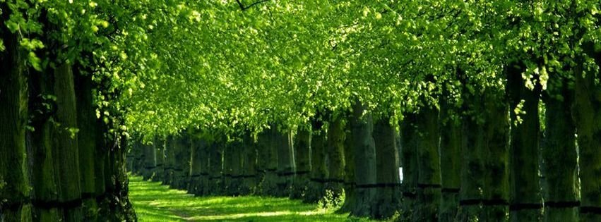 Nature facebook covers myfbcovers - Nature cover pages for facebook ...